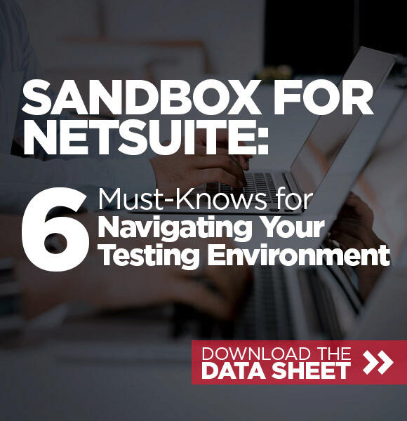 NetSuite Sandbox Data Sheet